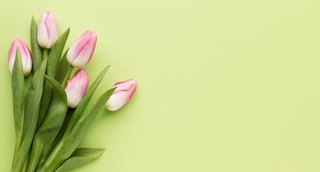 Copy-space букет из тюльпанов Бесплатные Фотографии