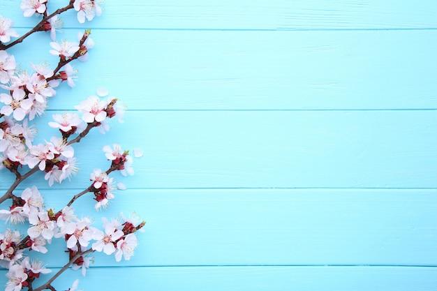 Ветви весны зацветая на голубой деревянной предпосылке с copyspace. Premium Фотографии