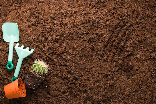 サボテンとcopyspaceと園芸工具のフラットレイアウト 無料写真