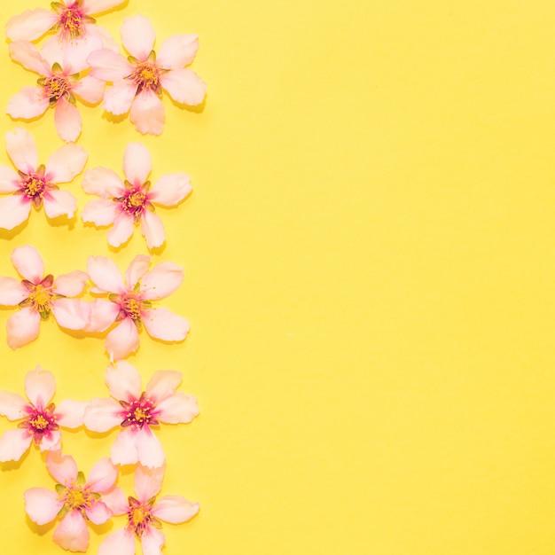 Copyspaceと黄色の背景上の花 無料写真