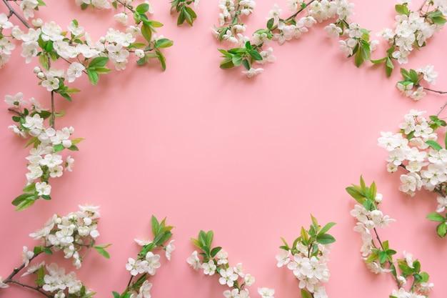 Рамка весны белые фрукты цветут ветви на розовый. цветочный. вид сверху, плоская планировка. фон copyspace Premium Фотографии