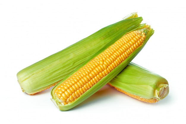 Corn isolated on white Premium Photo