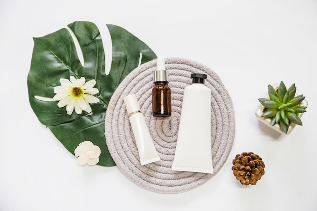 Cosmetic product and essential oil bottle on rope coaster with flower; leaf; pinecone and cactus plant Free Photo
