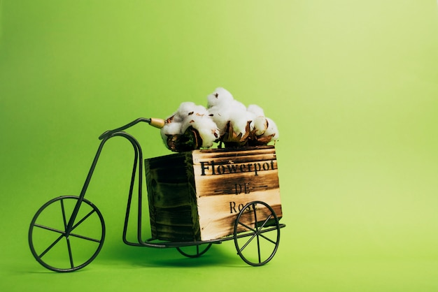 Cotton pod on an antique bicycle against green background Free Photo