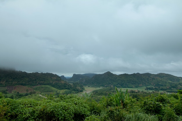 Coudy dark day with fog on mountains Premium Photo