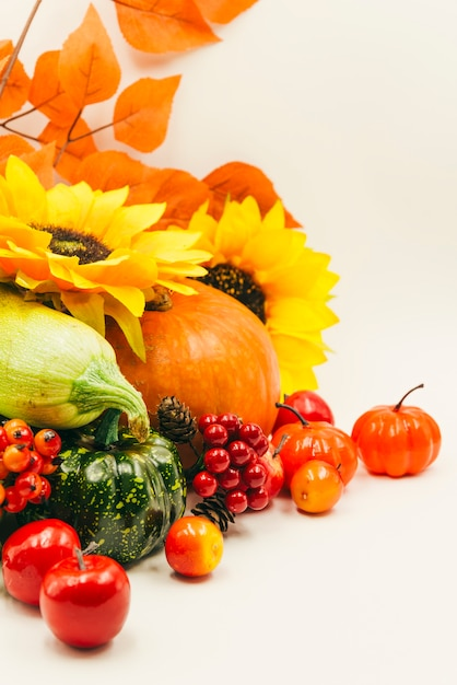 Country harvest on white surface Free Photo