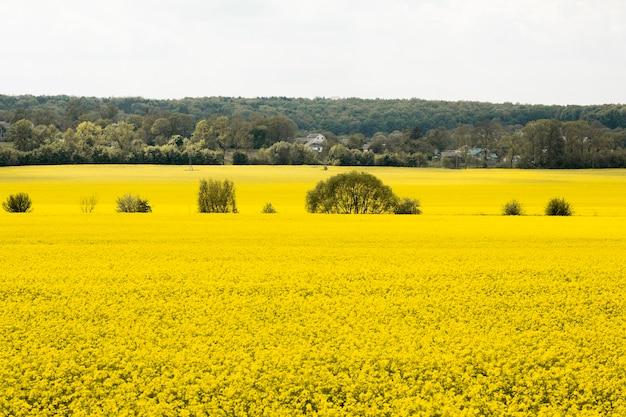 田舎の農場の風景 無料写真