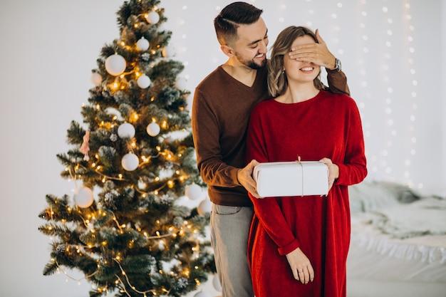 一緒にクリスマスを祝うカップル 無料写真