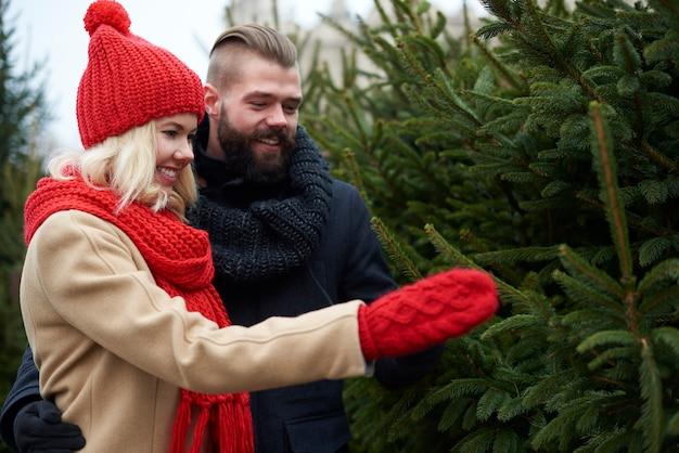 カップルは完璧なクリスマスツリーを選びます 無料写真