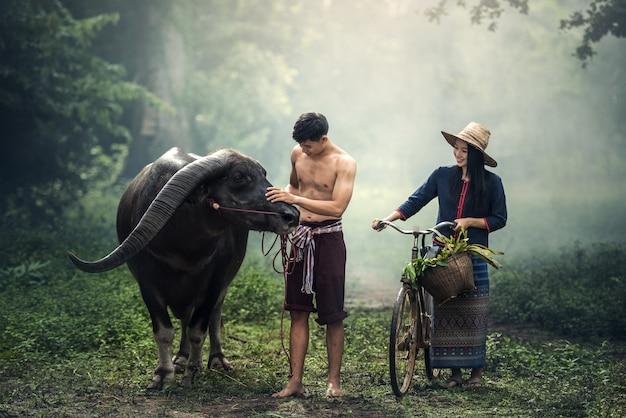 Couple farmer in farmer suit with buffalo Premium Photo