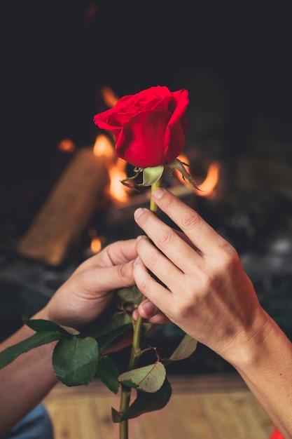 парень с одной розой в руках фото это удовольствием