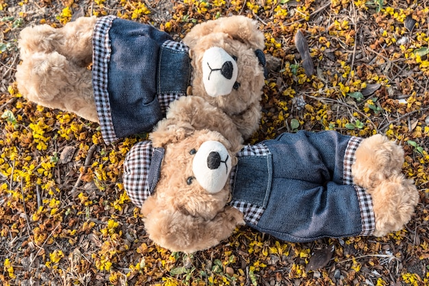Couple Teddy Bears Rest On Ground Photo
