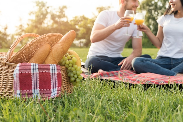 Couple toasting on a picnic blanket Free Photo