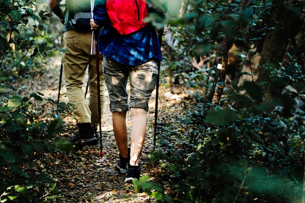 Couple trekking together Free Photo