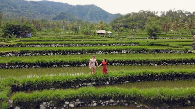 バリ島のライズフィールドで歩くカップル 無料写真