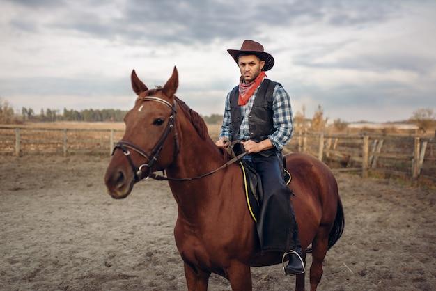 Ковбой верхом на лошади в пустынной долине Premium Фотографии
