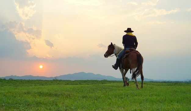 Cowboy riding horse against sunset in the field Premium Photo