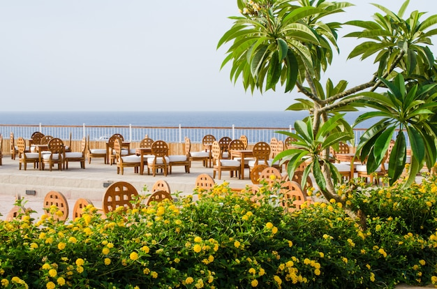 Cozy restaurant or cafe on territory of five star hotel with sea view in sharm el sheikh. Premium Photo
