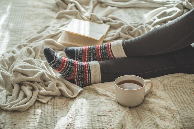 居心地の良い冬の秋の日 Premium写真