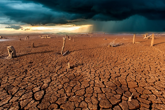 Cracked dry land without water.abstract background. Premium Photo