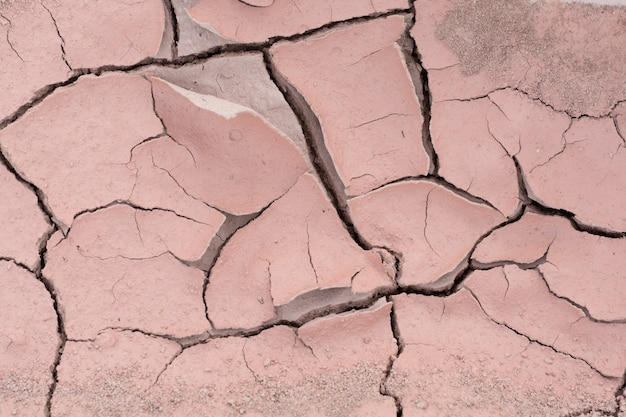 Cracked earth Premium Photo