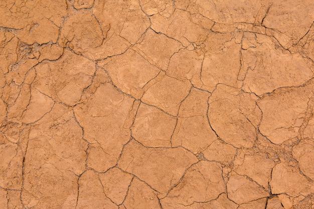 Cracked soil for background Premium Photo