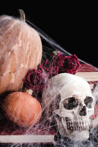 Cranium with pumpkins and spider web Free Photo