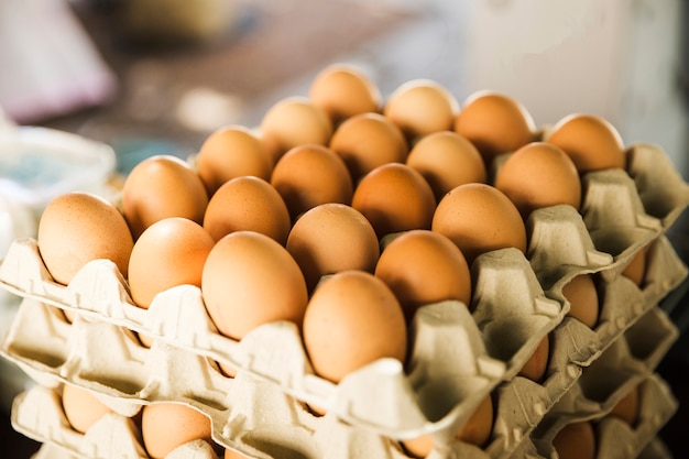 Crates of organic eggs in the market Free Photo