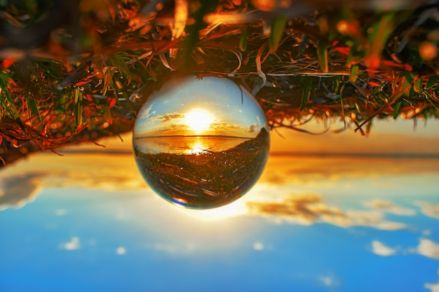 Creative crystal lens ball photography of greenery and a lake at sunset Free Photo