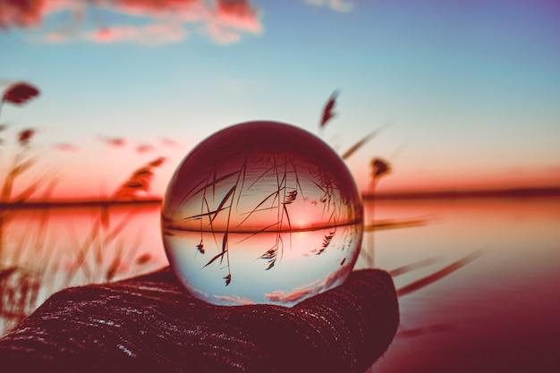 Fotografia creativa della sfera dell'obiettivo di cristallo di un lago con vegetazione alta intorno Foto Gratuite
