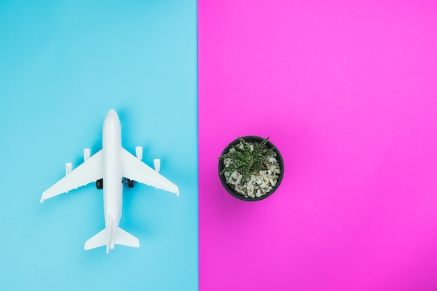 Creative flat lay fashion style with travel concept colorful background Premium Photo
