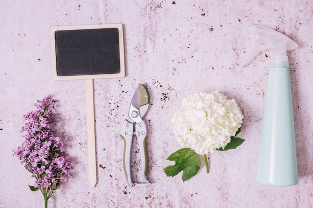Creative flat lay gardening concept Free Photo