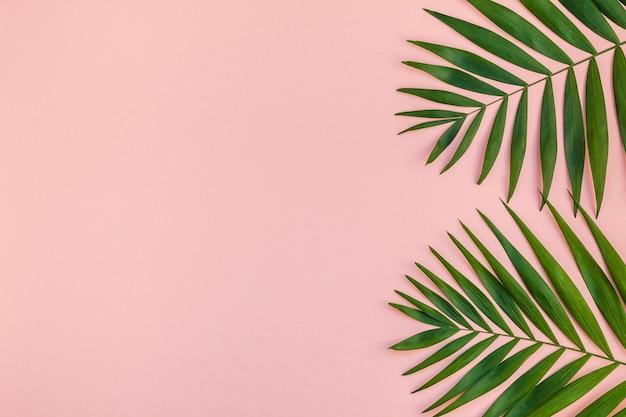 緑の熱帯のヤシの葉ミレニアルピンクの紙の背景の創造的なフラットレイ上面図 Premium写真