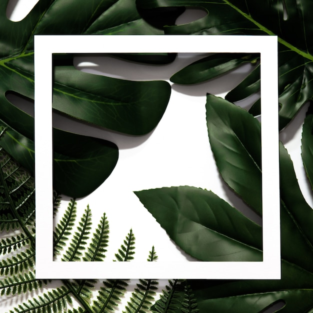 Creative layout made of tropical leaves with empty white paper frame. Premium Photo