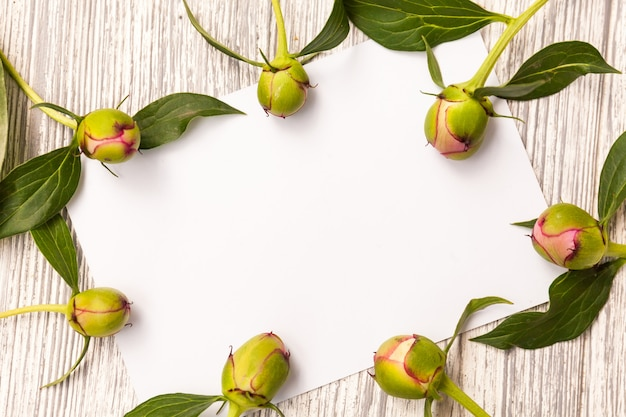 Creative layout with flowers, leaves and copy space card note. Premium Photo