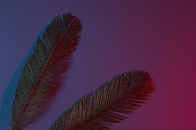 Creative pop art tropical concept. golden palm leaves on blue-red neon gradient background. Premium Photo