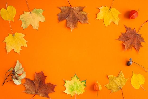 クリエイティブトップビューフラットレイ秋のコンセプト構成。乾燥した明るい秋はオレンジ色の紙フレームの背景のコピースペースを残します。 Premium写真