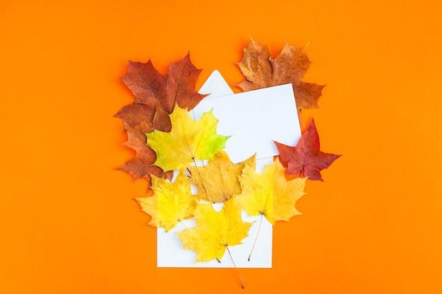 クリエイティブトップビューフラットレイ秋のコンセプト構成。封筒乾燥した明るい紅葉 Premium写真