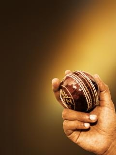 Cricket ball, pitch Free Photo