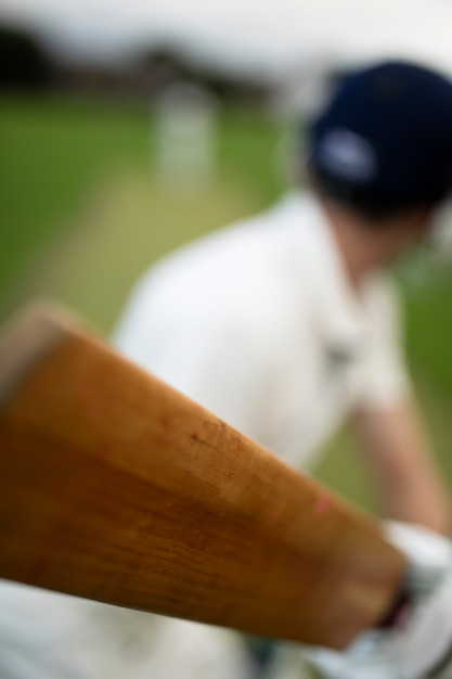Cricketer on the field in action Free Photo