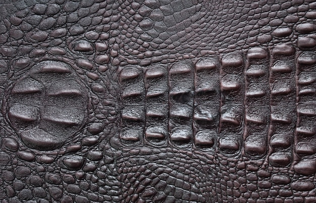 Крокодил текстура кожа фон Premium Фотографии