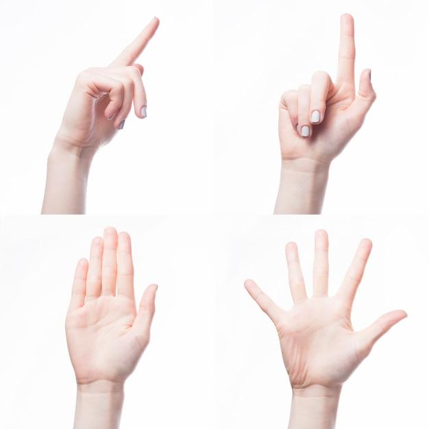 Crop hand gesturing on white background Premium Photo