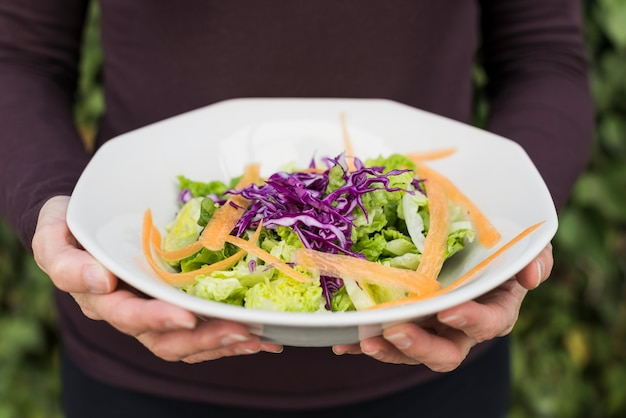 Crop person holding green salad Free Photo