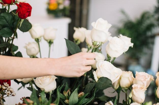 Crop woman arranging flowers Premium Photo