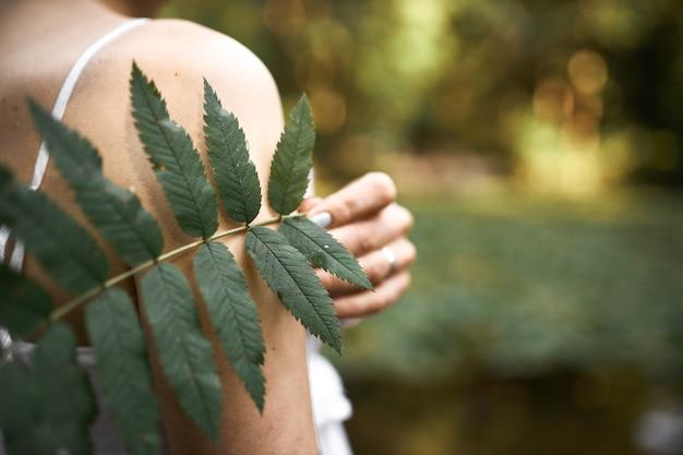 晴れた日に屋外でリラックスしながら緑の葉を持って公園でポーズをとる未知の謎の若い女性のトリミングされた画像。女性の手でシダ植物のクローズアップ。 無料写真