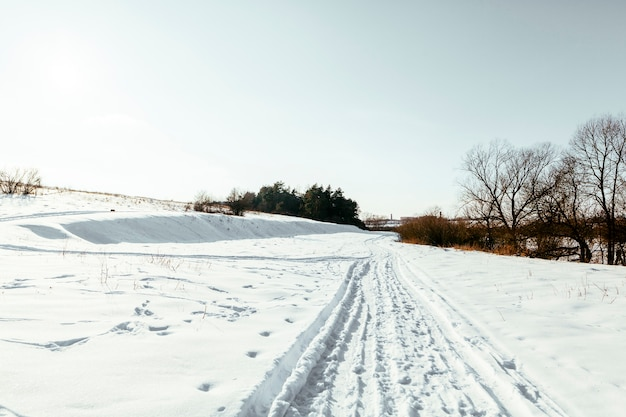 Cross country ski tracks on snowy landscape in winter Free Photo