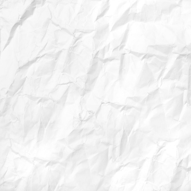 Crumpled White Paper Photo  Free Download