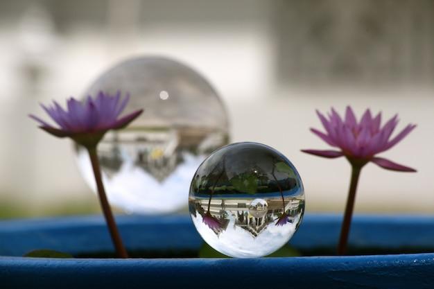 Sfera di cristallo con due fiori viola accanto Foto Gratuite