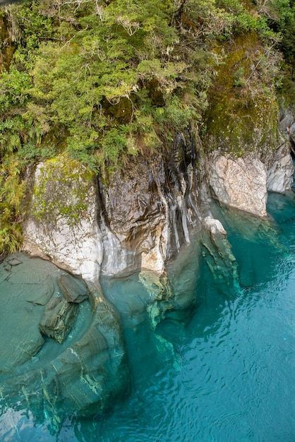 Кристально чистая чистая голубая вода голубых бассейнов реки в фьордленде. Premium Фотографии