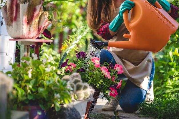 庭で水まき缶を使用して花壇に花に水をまく庭師女性。ガーデニングと花culture栽培、フラワーケア Premium写真